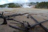 Yellowstone gejzírová oblast